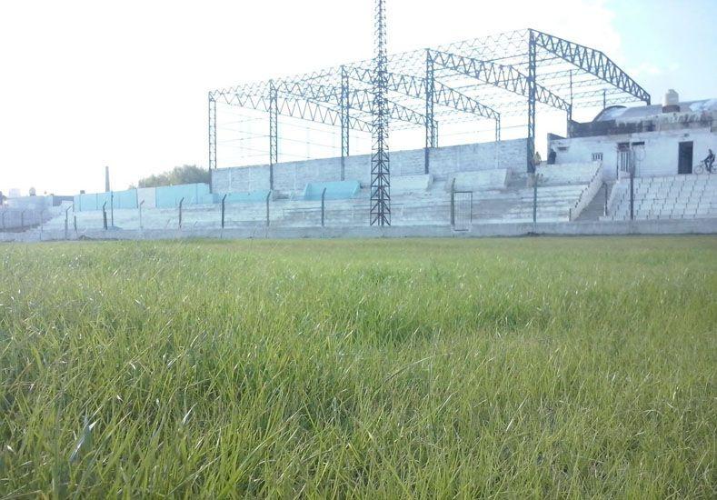 Que lo pisen. El césped de la cancha de Peñarol luce de la mejor manera. Será el primer partido como local del Tricolor.