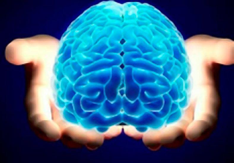 En Tokio crearon un test para saber si tu cerebro está saludable