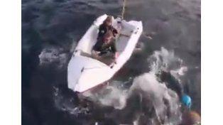 Un tiburón generó pánico al atacar un pequeño bote con dos tripulantes