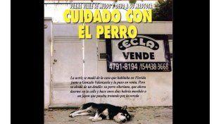 Sin corazón: Juanita Viale se mudó y abandonó a su perro