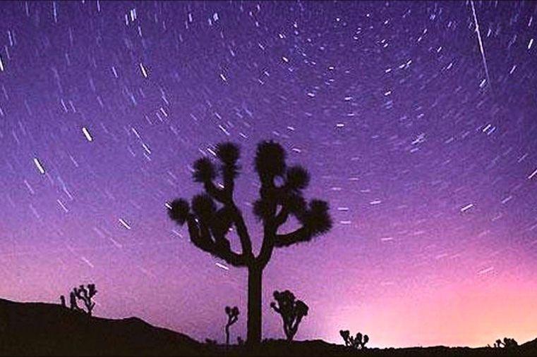 Lluvia de estrellas: en vivo