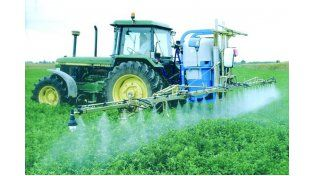 En el día de la tierra, Greenpeace pidió la prohibición del glifosato