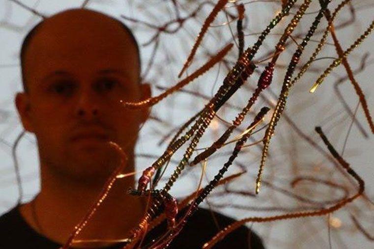 Vezzosi entre alambres anodizados