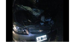 Falleció el conductor del automóvil que el domingo chocó un equino en la Autovía 14