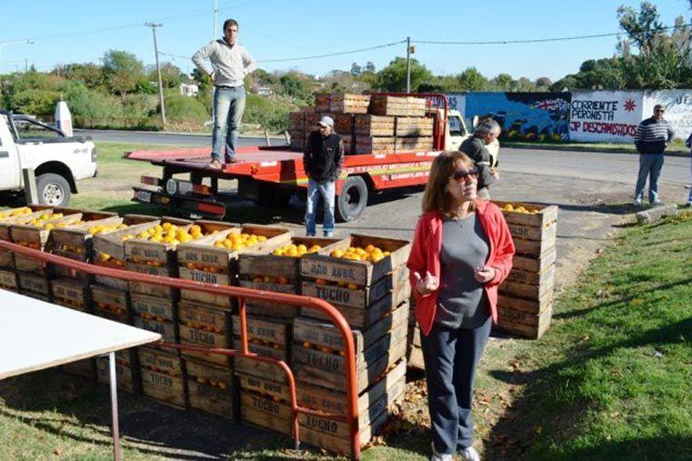 Citrus Para Todos vuelve a Paraná