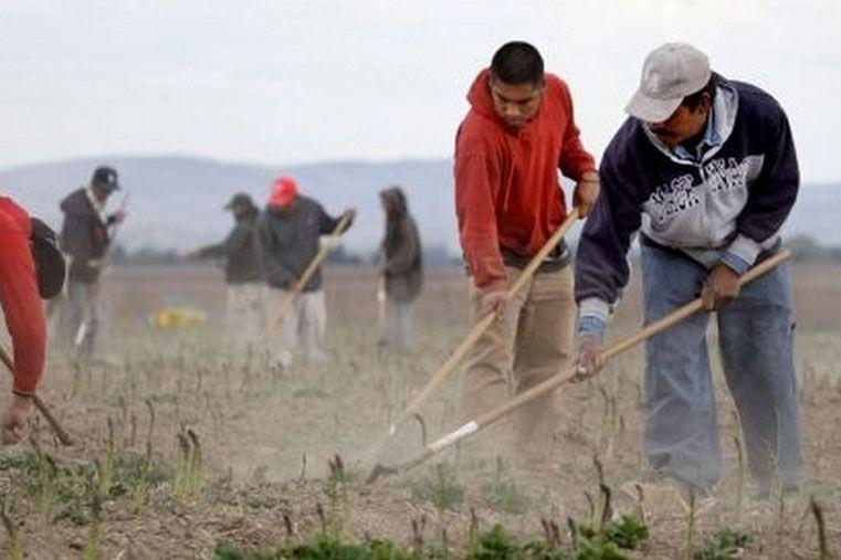 Esfuerzo conjunto. Se propone luchar contra el acaparamiento de la tierra o la propiedad y los alimentos como meras mercaderías.