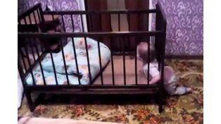 El bebé escapista que triunfa en las redes