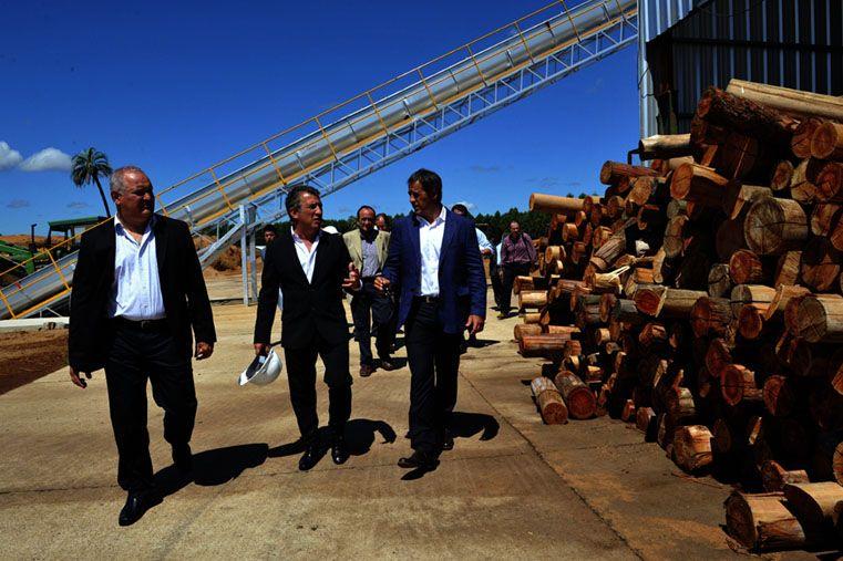 Entre Ríos producirá energía alternativa a partir de desechos de la madera