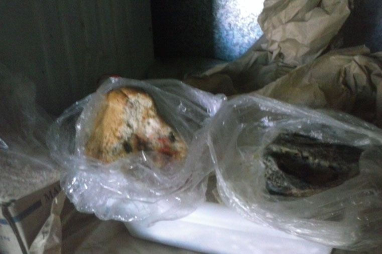 Decomiso: Tenían los pollos faenados para vender en el baño
