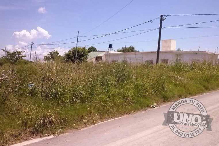 Terrenos baldíos descuidados por sus dueños en Diego Mackinon y Las Garzas. Se junta basura