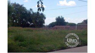 Vecinos de Paraná XX advirten sobre el estado de abandono del barrio