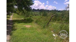 Lago del parque Mainini que hoy está cubierto por pastizales y hay olores nauseabundos.