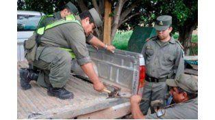 Secuestran más de 300 kilos de marihuana que eran transportados por Ruta 14