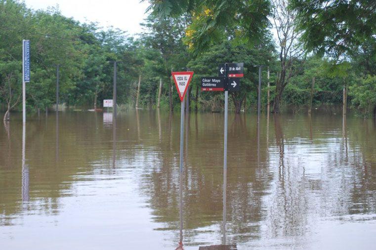 Inundados. El panorama es similar al que se vive en la orilla argentina. Foto Gentileza/Diario La Prensa de Salto