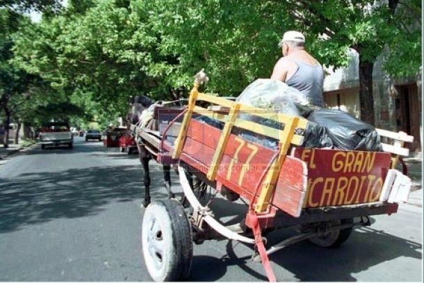 Promulgaron la prohibición de carros de tracción a sangre y la utilización de látigos contra animales