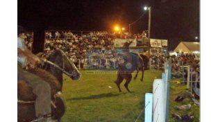 Tropilleros y jinetes desmienten maltrato a caballos en festivales