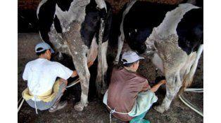 En un contexto crítico para el sector lácteo vuelve la exposición lechera en Nogoyá