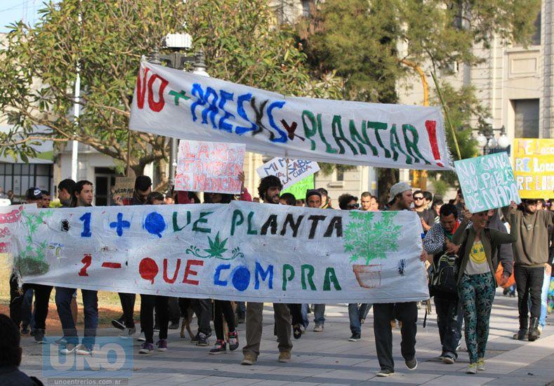 La última marcha que se realizó en Paraná pidiendo por la legalización del cannabis. Foto UNO Diego Arias.