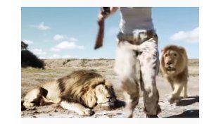 Una pareja de cazadores mata a un león y un congénere se venga