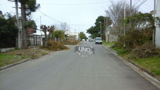 Así está abandonada la vecinal Lomas del Sur