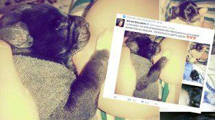 El bizarro tweet de Silvina Escudero