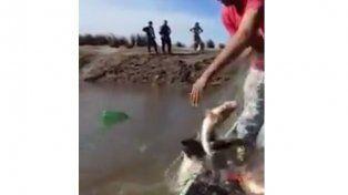 Preocupa la pesca depredadora en río Gualeguay
