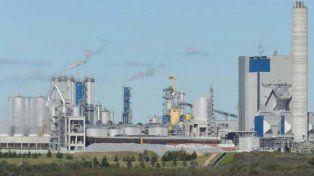Instalan una nueva planta de celulosa en Uruguay y será la más grande del mundo
