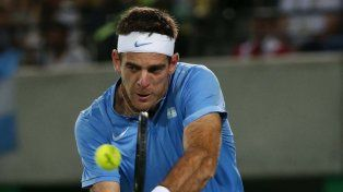 Del Potro, tras vencer a Djokovic: Sentí que volví a jugar al tenis