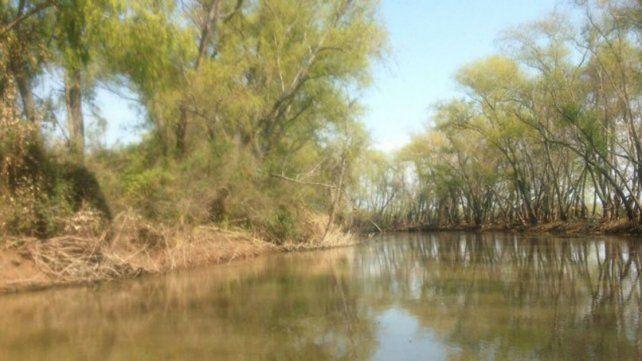 Legado Deliot. Los terrenos están ubicados sobre el humedal del Alto Delta del río Paraná.