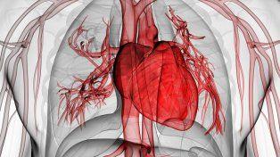 Rápida reacción. Cuando hay una falla cardíaca se debe actuar presurosos para lograr la estabilización en un nosocomio.