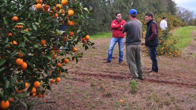El gobierno provincial asiste a productores afectados por el granizo