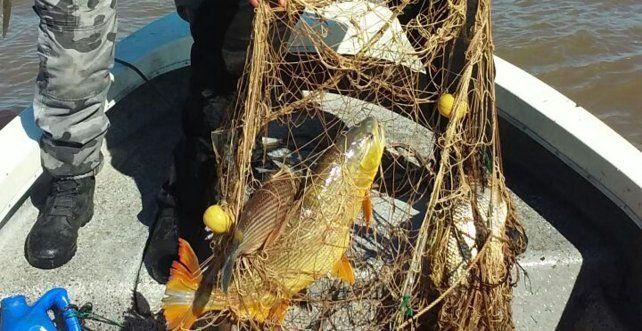 Los uniformados devolvieron los pescados al río. Foto Policía de Entre Ríos.