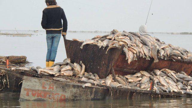 Triste panorama. Los pescadores perdieron mercadería por más de 50.000 pesos.