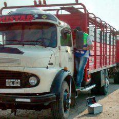 El camión fue abandonado y encontrado horas después del asalto, sin las vacas.