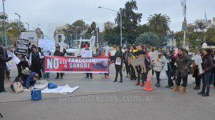 Tras manifestarse a favor de la eliminación de la tracción a sangre