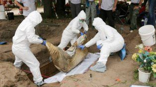 Hallaron más de 200 cadáveres sepultados irregularmente en Veracruz
