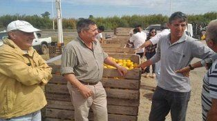 Titular de la Federación del Citrus: perdimos contacto con De Angeli
