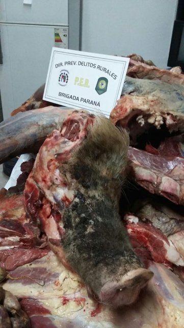 En una carnicería de Paraná decomisaron 600 kilos de carne en mal estado
