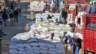 Cientos de estibadores cargan 12.500 toneladas de arroz con destino a Irak