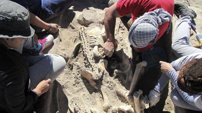 Encuentran en Mendoza un cementerio indígena de más de mil años