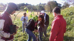 Experiencia. Se extiende a distintas escuelas de Paraná.