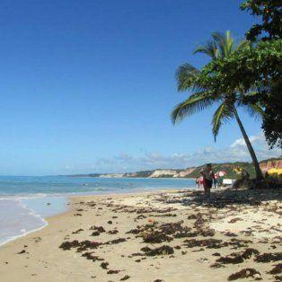 Promociones. Se consiguen buenos precios para viajar al norte de Brasil.