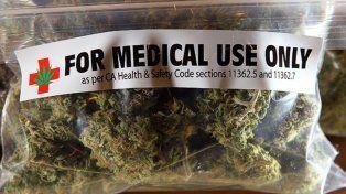 Hay consenso en Diputados para legislar sobre el cannabis medicinal