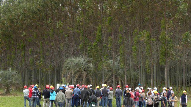 Participantes de la XXIX edición de las Jornadas Forestales de Entre Ríos. Foto INTA.