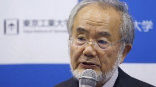 Un japonés obtuvo el Premio Nobel de Medicina 2016