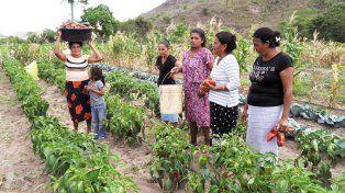 Argentina y FAO impulsan campaña para visibilizar problemas de la mujer rural