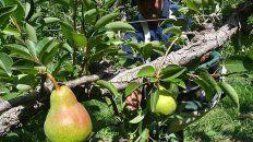 precios de productos agricolas se multiplicaron por 4,9 veces en septiembre, del campo a la gondola