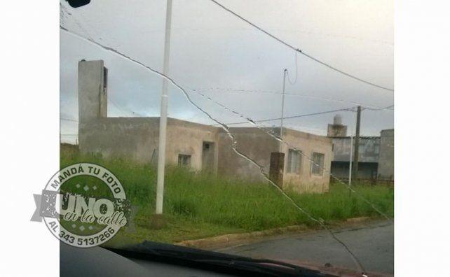 Aparecen ofidios en San Benito por falta de desmalezado
