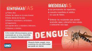 Refuerzan controles para prevenir enfermedades transmitidas por el Aedes aegypti