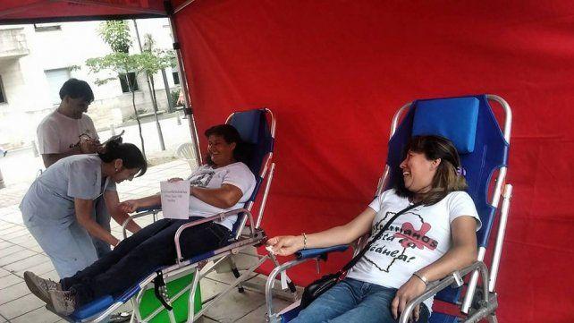 Estudiantes del Cristo realizarán colecta de sangre y registro de médula ósea